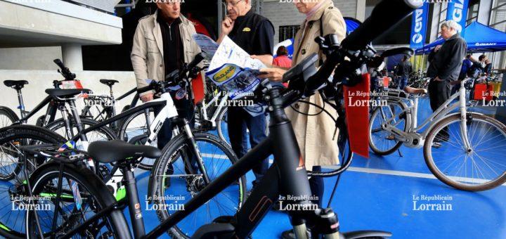 Recherche vélo fille d'occasion